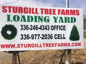 christmas tree loading yard